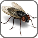 3D Bugs Free Live Wallpaper