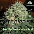 Weed Catcher icon