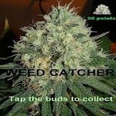 Weed Catcher