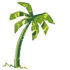 Florida Studen icon