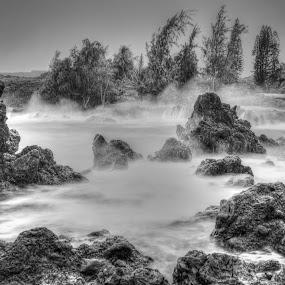 Rough Seas by Eddie Tuggle - Black & White Landscapes ( hana, rough sea, halfway, ocean, rocks, hawaii )