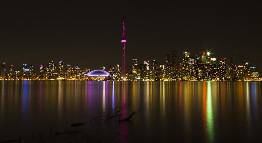 Toronto Nightscape!  by Hasan Mahmud Tipu - City,  Street & Park  Night