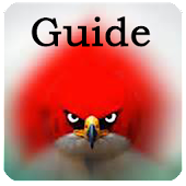 Angry Birds : Tips & Guide