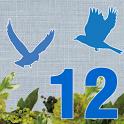 12星鳥占い:運試し!「あなたが2012年に迎える五大運勢」 icon