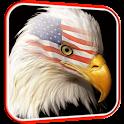 USA Eagle Live Wallpaper icon