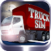 Truck Sim: 3D Night Parking