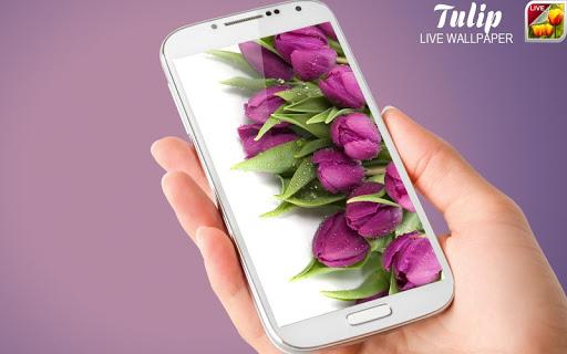 Unduh 43+ Download Wallpaper Bunga Violet Terbaik