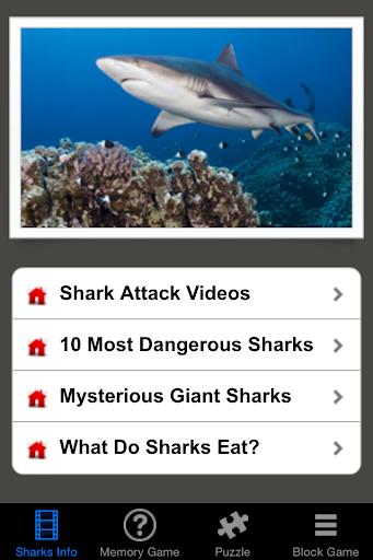 Shark Revenge Attack