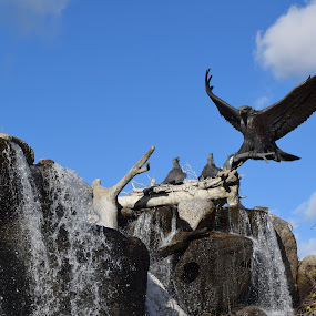 Eagle Art by Michelle Bergeson - Artistic Objects Still Life ( water, sculpture, sky, nature, wildlife, eagles,  )