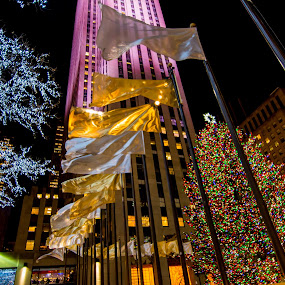 by Mohamed Hussein - City,  Street & Park  Night ( flags, tree, skyscraper, xmas, rockvilar, newyork )