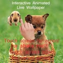 Puppy Interactive LWP icon