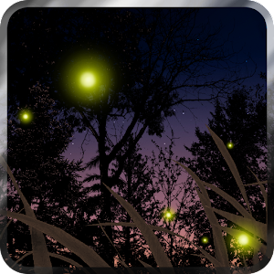 Fireflies Live Wallpaper 個人化 App LOGO-APP試玩