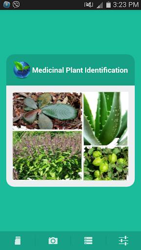 Medicinal Plant Identification