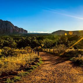 The Sun Also Rises by CEBImagery .com - Landscapes Sunsets & Sunrises ( redrock, grass, lens, hiking, country, backcountry, sunburst, sky, arizona, trail, trees, sunrise, flare, sedona )