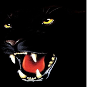 Panther Rush