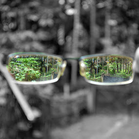 This is how I see !! by Bhaskar Kalita - Artistic Objects Other Objects ( greenish, selective color, selective, green, greenery, glass )