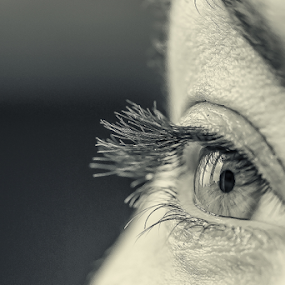 window in the eyey by Horst Winkler - Black & White Portraits & People ( face, faces, augen, eyelashes, black and white, white, windows, gesichter, eyes, fenster, gesicht, wimpern, window, wimper, auge, black, eye,  )