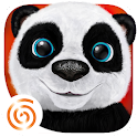 Teddy the Panda APK Cracked Download