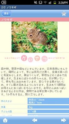 赤ちゃん動物図鑑100のおすすめ画像5