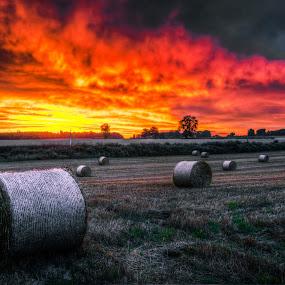 sky on fire by Ray Heath - Landscapes Sunsets & Sunrises ( clouds, sky, sunset, harvest, landscape,  )