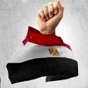 انتخابات الرئاسه 2012 icon