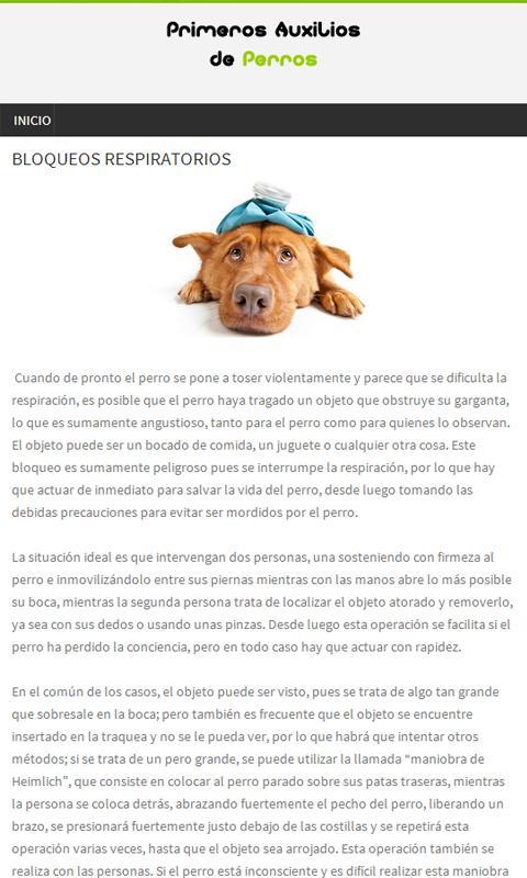 Perros, Primeros auxilios- screenshot