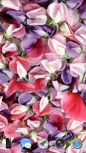 Petals 3D live wallpaper- screenshot thumbnail