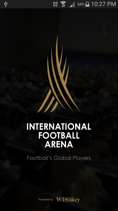 International Football Arena- screenshot