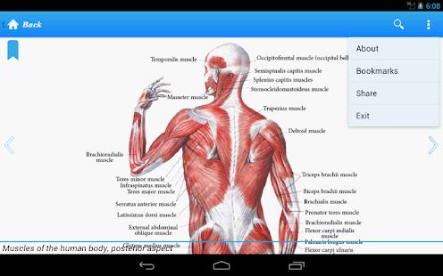玩免費醫療APP|下載Human Anatomy I app不用錢|硬是要APP