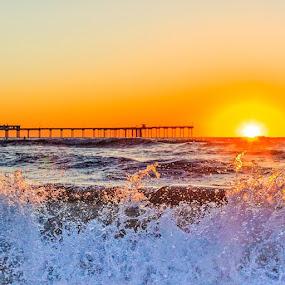 by Roman Gomez - Instagram & Mobile Instagram ( roman, sunset, oceanbeach,  )