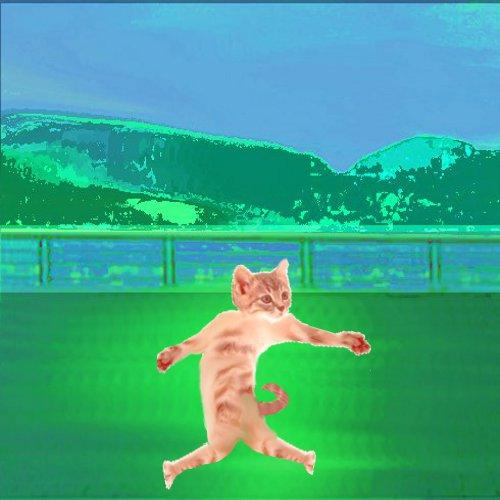 Dancing Cat - screenshot
