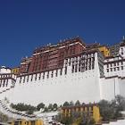 西藏玩家 icon