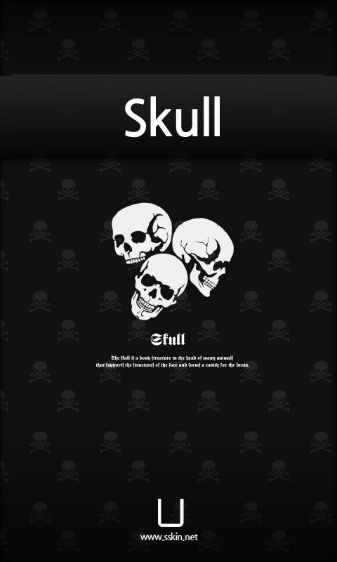 [SSKIN] Skull - screenshot
