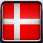 Danish Vocabulary Quiz