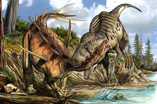 恐龍發現大作戰|兒童探險家