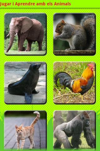 Jugar i Aprendre: Animals - screenshot