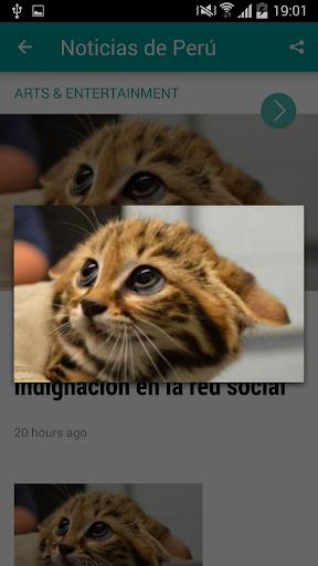 【免費新聞App】Noticias de Perú-APP點子