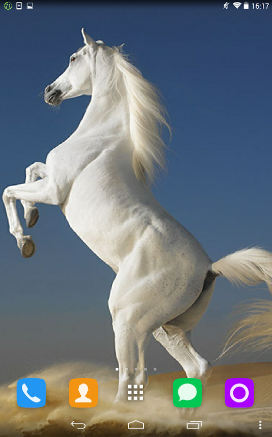 white horse live wallpaper android apps on google play