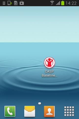 CASP Baseline Assessment