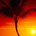 Beautiful Sunshine Wallpaper 3 logo