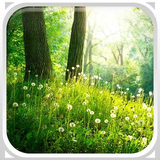 林動態壁紙 個人化 App LOGO-APP試玩