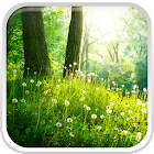 Bosque Fondo Animado icon
