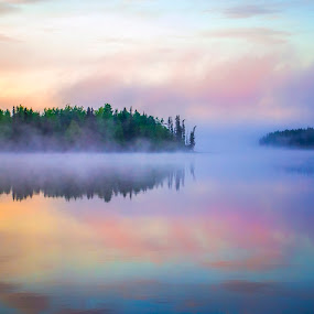 Morning Mist by Charles Adam - Landscapes Waterscapes ( water, calm, waterscape, fog, serene, dew, forest, lake, morning, island, mist )