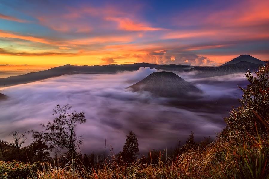 Foggy by Yossy Ryananta - Landscapes Sunsets & Sunrises ( hill, mountain, fog, cloud, bromo )