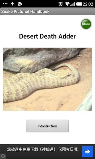Snake Pictorial Handbook