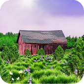 Red Barn Live Wallpaper
