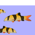 Fish Tank Hardness icon