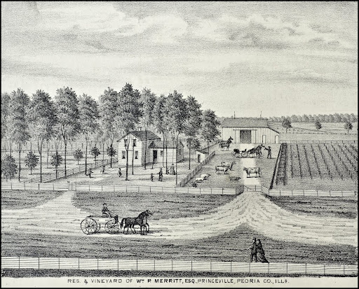 Residence and Vineyard of William P. Merritt, Esq.