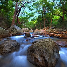 Thalaiyanai by Kafoor Sammil - Nature Up Close Rock & Stone ( water, thalaiyanai, india )