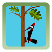 Woodpecker Backyard Woodcutter